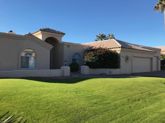 8689 E Windrose Drive, Scottsdale, AZ 85260 (MLS #5863615) :: Phoenix Property Group