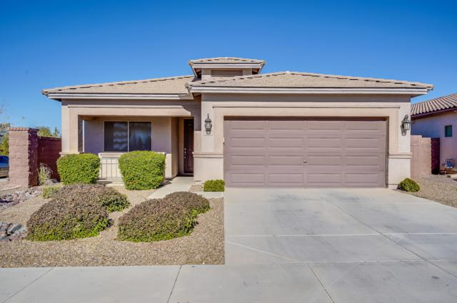 1576 W Birch Road, San Tan Valley, AZ 85140 (MLS #5863703) :: The Everest Team at My Home Group