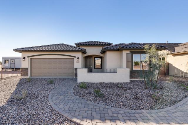 11309 W Vernon Avenue, Avondale, AZ 85392 (MLS #5863758) :: The Daniel Montez Real Estate Group