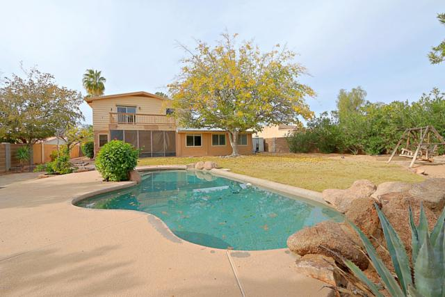 13815 N Kendall Drive, Fountain Hills, AZ 85268 (MLS #5863778) :: The Daniel Montez Real Estate Group