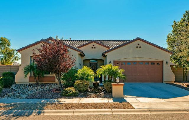 11757 N 165th Avenue, Surprise, AZ 85388 (MLS #5863793) :: The Everest Team at My Home Group