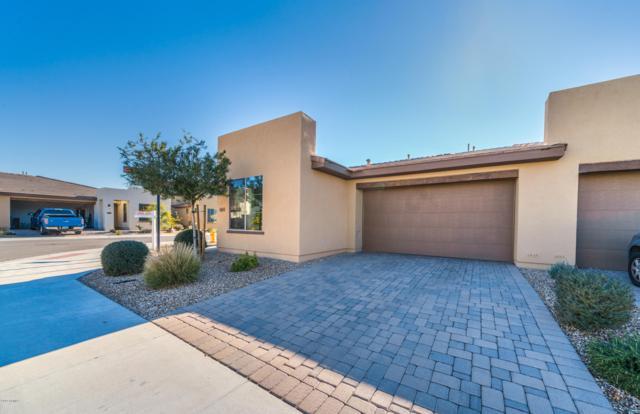 879 E Silversword Lane, San Tan Valley, AZ 85140 (MLS #5863874) :: The Daniel Montez Real Estate Group