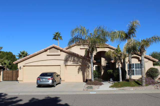 7830 W Adobe Drive, Glendale, AZ 85308 (MLS #5863888) :: Team Wilson Real Estate