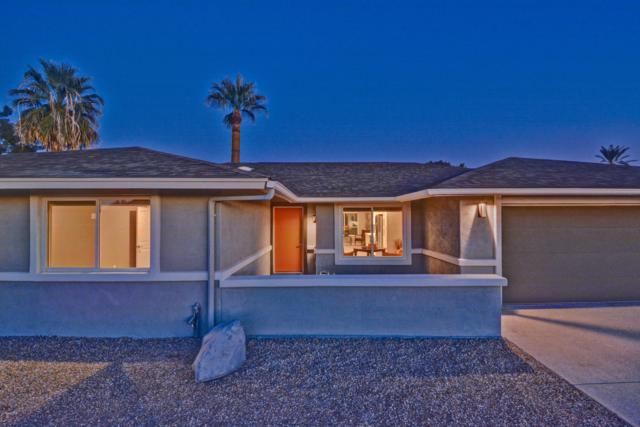 14607 N Cameo Drive, Sun City, AZ 85351 (MLS #5863914) :: Conway Real Estate