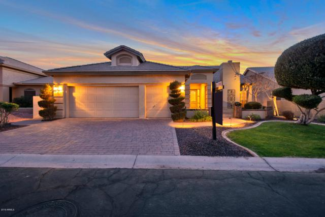 9841 E Cedar Waxwing Drive, Sun Lakes, AZ 85248 (MLS #5863956) :: CC & Co. Real Estate Team