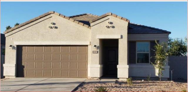 8595 S 257TH Avenue, Buckeye, AZ 85326 (MLS #5863969) :: The Daniel Montez Real Estate Group