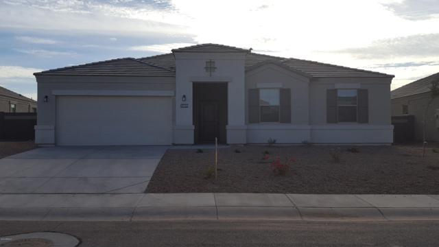 30203 W Fairmount Avenue, Buckeye, AZ 85396 (MLS #5863975) :: The Sweet Group