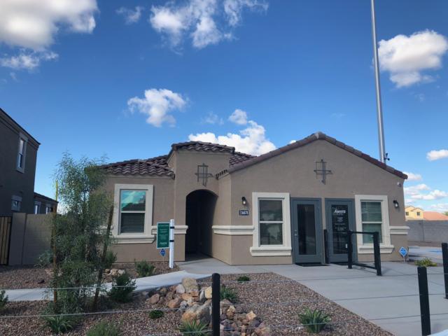 36854 W Mditerranean Way, Maricopa, AZ 85138 (MLS #5864004) :: Yost Realty Group at RE/MAX Casa Grande