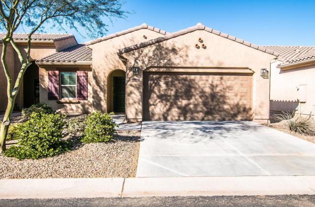 4914 W Posse Drive, Eloy, AZ 85131 (MLS #5864021) :: Yost Realty Group at RE/MAX Casa Grande