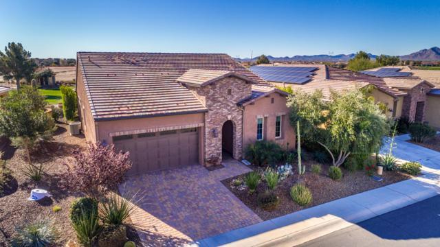 37179 N Stoneware Drive, San Tan Valley, AZ 85140 (MLS #5864113) :: Kortright Group - West USA Realty