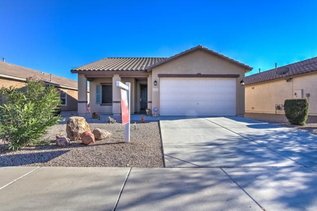 40215 W Green Court, Maricopa, AZ 85138 (MLS #5864160) :: Yost Realty Group at RE/MAX Casa Grande