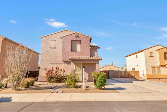 29900 N Cholla Drive, Florence, AZ 85132 (MLS #5864179) :: The Property Partners at eXp Realty