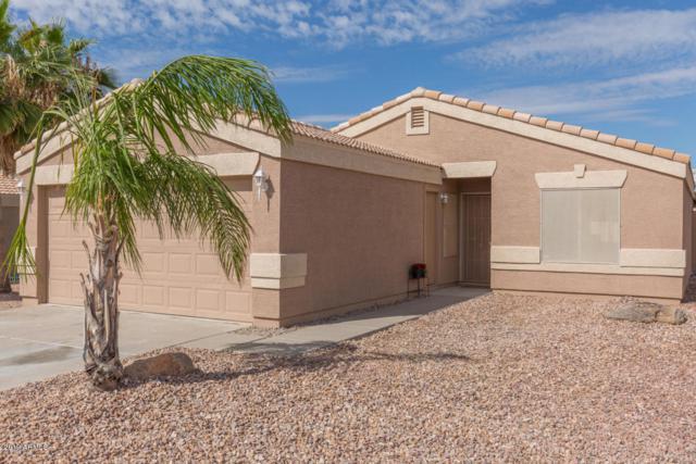 1262 W Diamond Avenue, Apache Junction, AZ 85120 (MLS #5864263) :: The Kenny Klaus Team