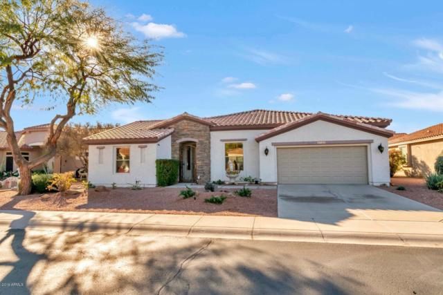 4743 E Jude Court, Gilbert, AZ 85298 (MLS #5864311) :: Occasio Realty