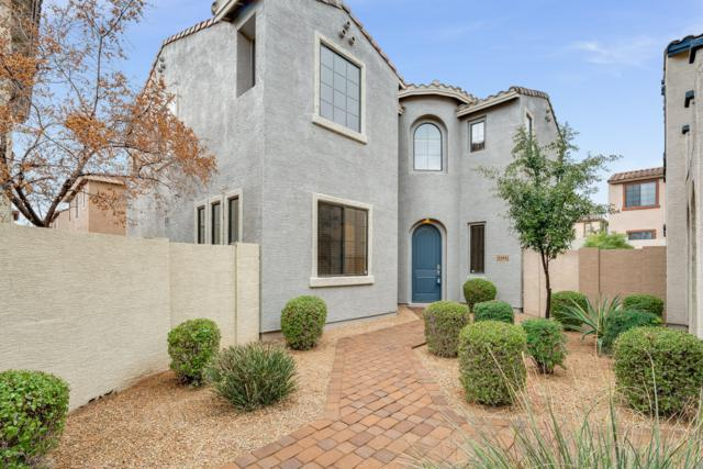2344 W Dusty Wren Drive, Phoenix, AZ 85085 (MLS #5864330) :: The Daniel Montez Real Estate Group