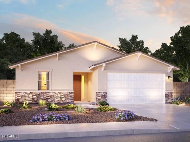 7321 N 123RD Drive, Glendale, AZ 85307 (MLS #5864394) :: Conway Real Estate