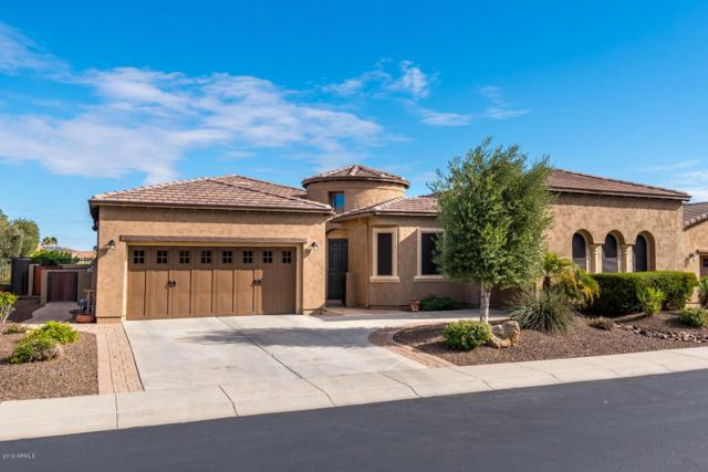 27077 N 130th Drive, Peoria, AZ 85383 (MLS #5864399) :: The Everest Team at My Home Group