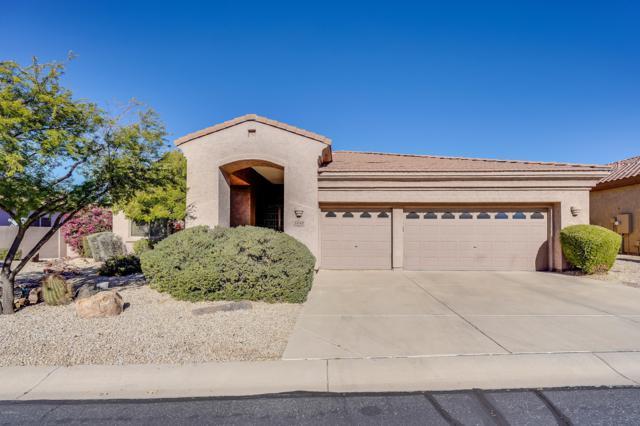 5042 E Desert Vista Trail, Cave Creek, AZ 85331 (MLS #5864481) :: Yost Realty Group at RE/MAX Casa Grande