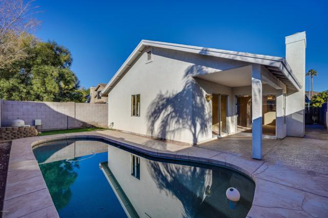 4413 W Oraibi Drive, Glendale, AZ 85308 (MLS #5864490) :: The W Group