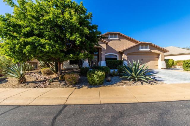 16356 N 99TH Place, Scottsdale, AZ 85260 (MLS #5864500) :: The W Group