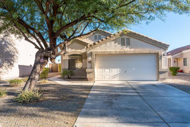 12441 W Via Camille Street, El Mirage, AZ 85335 (MLS #5864506) :: RE/MAX Excalibur