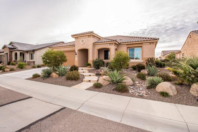 27003 W Oraibi Drive, Buckeye, AZ 85396 (MLS #5864540) :: Kortright Group - West USA Realty