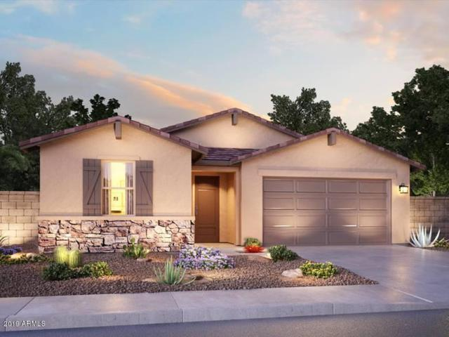7337 N 123RD Drive, Glendale, AZ 85307 (MLS #5864574) :: Conway Real Estate