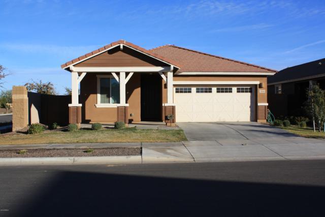 7044 E Onza Avenue, Mesa, AZ 85212 (MLS #5864633) :: The Property Partners at eXp Realty