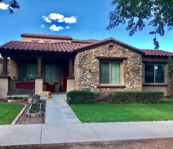 20930 W Prospector Way, Buckeye, AZ 85396 (MLS #5864660) :: The Daniel Montez Real Estate Group