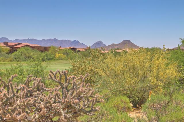 11022 E Winter Sun Drive, Scottsdale, AZ 85262 (MLS #5864671) :: The Daniel Montez Real Estate Group
