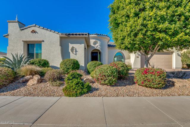 2042 N 159TH Avenue, Goodyear, AZ 85395 (MLS #5864751) :: RE/MAX Excalibur