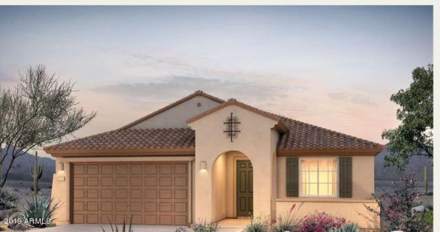 26073 W Matthew Drive, Buckeye, AZ 85396 (MLS #5864831) :: CC & Co. Real Estate Team