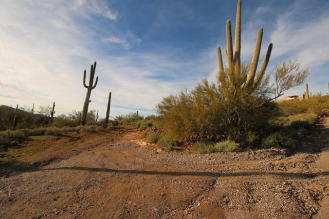 0 N 16th Street, New River, AZ 85087 (MLS #5864902) :: Riddle Realty