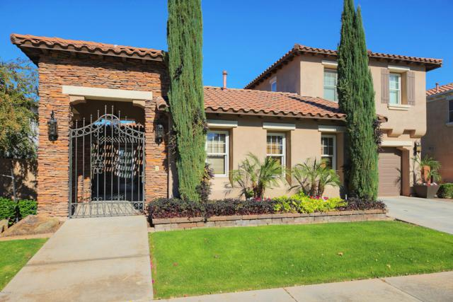 2308 E Aster Drive, Chandler, AZ 85286 (MLS #5864916) :: Lifestyle Partners Team
