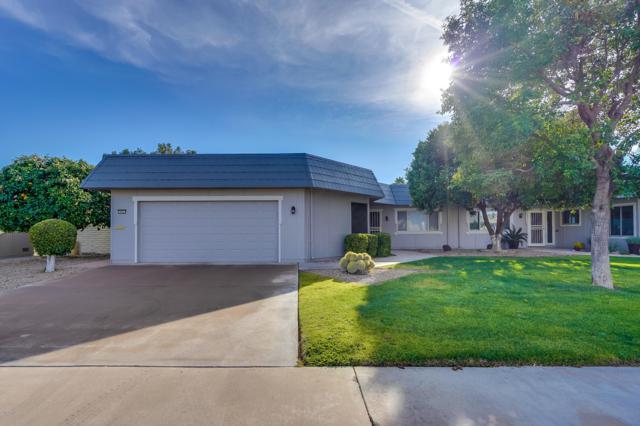 10457 W Campana Drive, Sun City, AZ 85351 (MLS #5864966) :: The Daniel Montez Real Estate Group