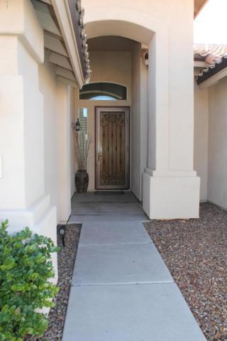 4603 W Erie Street, Chandler, AZ 85226 (MLS #5864992) :: Conway Real Estate