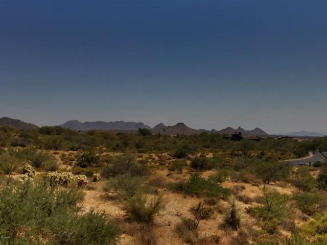 38243 N 109TH Street, Scottsdale, AZ 85262 (MLS #5864995) :: The Daniel Montez Real Estate Group