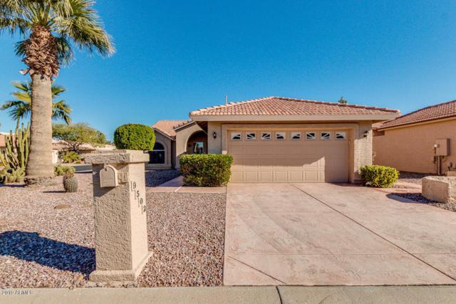 9502 E Hercules Drive, Sun Lakes, AZ 85248 (MLS #5865202) :: CC & Co. Real Estate Team
