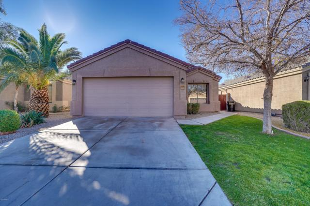 11117 E Aspen Avenue, Mesa, AZ 85208 (MLS #5865207) :: The Everest Team at My Home Group
