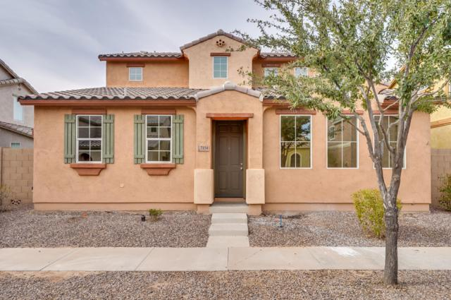 7154 S 48TH Lane, Laveen, AZ 85339 (MLS #5865268) :: The Laughton Team