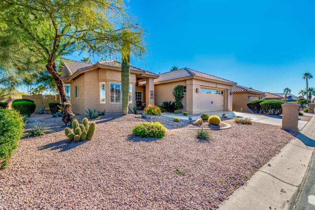 9341 E Jadecrest Drive, Sun Lakes, AZ 85248 (MLS #5865350) :: Conway Real Estate