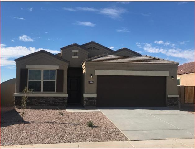 25588 W Winston Drive, Buckeye, AZ 85326 (MLS #5865397) :: The Daniel Montez Real Estate Group