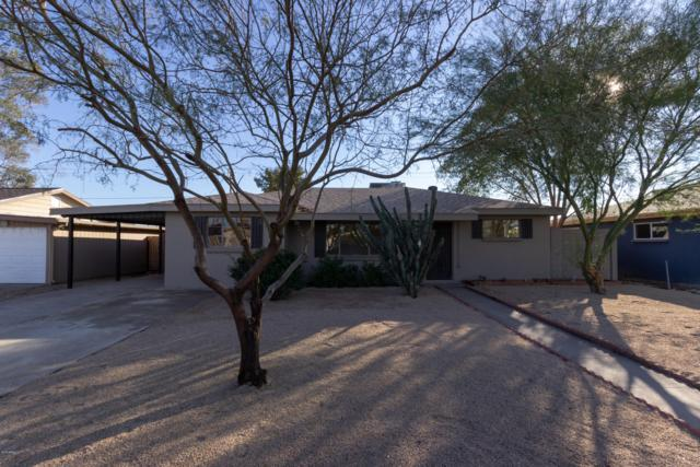 2805 W Lawrence Lane, Phoenix, AZ 85051 (MLS #5865436) :: Lifestyle Partners Team