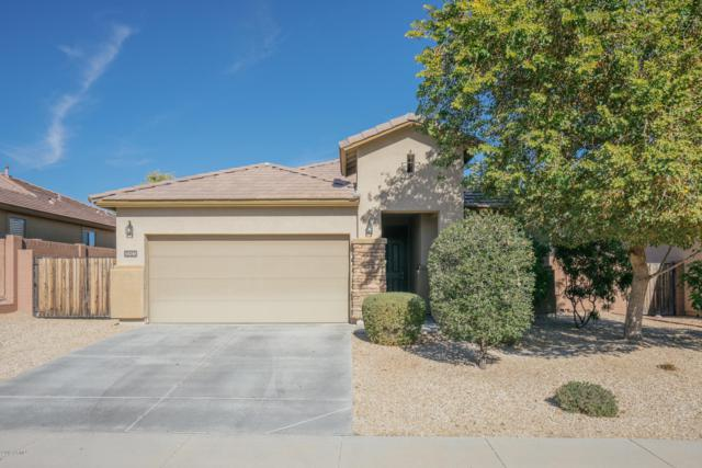 18248 W Vogel Avenue, Waddell, AZ 85355 (MLS #5865523) :: Lifestyle Partners Team