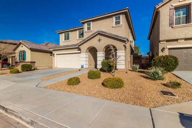 12038 W Tether Trail, Peoria, AZ 85383 (MLS #5865567) :: Conway Real Estate