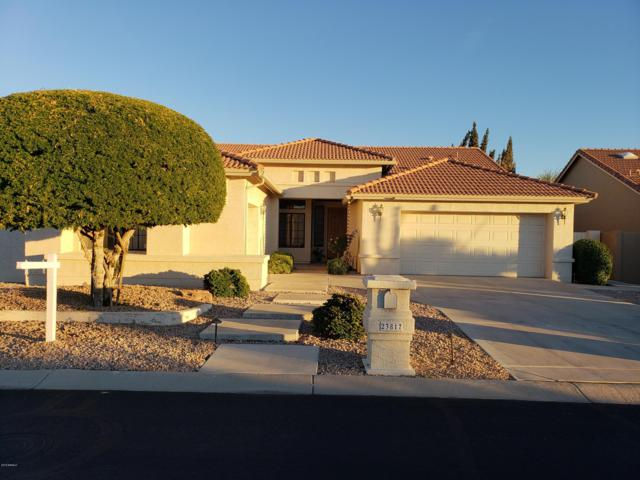 23817 S Berrybrook Drive, Sun Lakes, AZ 85248 (MLS #5865601) :: CC & Co. Real Estate Team