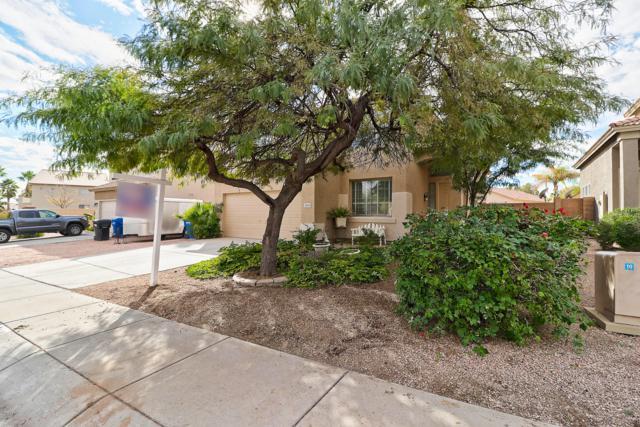 3134 N 127TH Avenue, Avondale, AZ 85392 (MLS #5865626) :: The Daniel Montez Real Estate Group