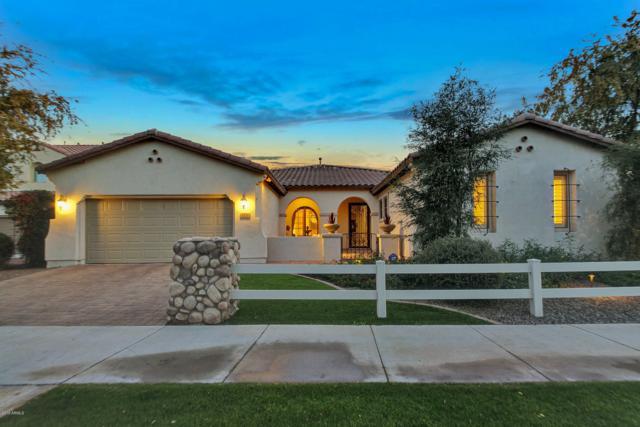 3721 E Old Stone Circle, Chandler, AZ 85249 (MLS #5865635) :: The Daniel Montez Real Estate Group
