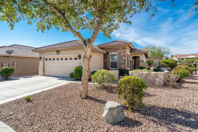 908 S 229TH Court, Buckeye, AZ 85326 (MLS #5865695) :: Devor Real Estate Associates