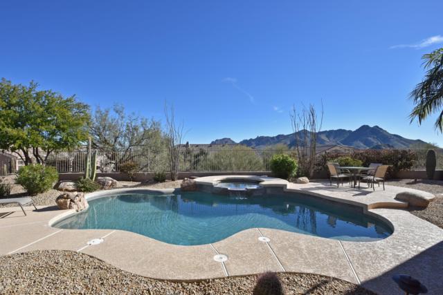 11545 E Desert Holly Drive, Scottsdale, AZ 85255 (MLS #5865717) :: The Property Partners at eXp Realty